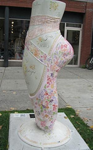 Saratoga Ballet Slipper