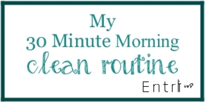 clean routine by EntriWP.com