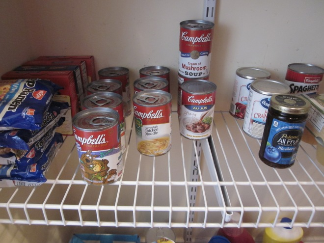 Organized Pantry cans